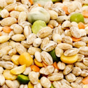 Pulses, Beans and Grains